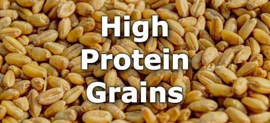 Multiple malts for grain bill