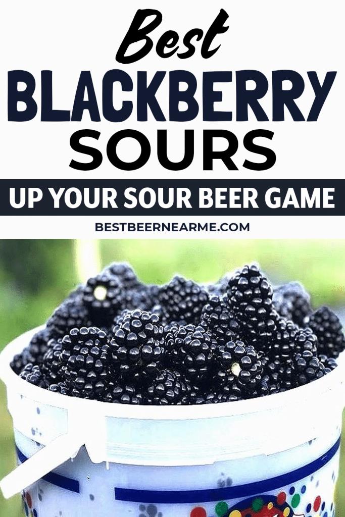 Best-Blackberry-Sours